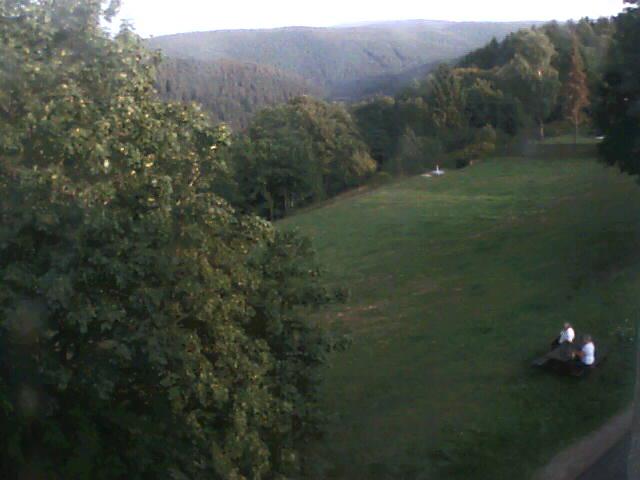 Webcam Frauenwald